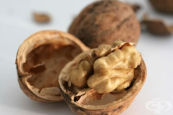 Използвайте орехови черупки за подсилване на имунитета, срещу хронична умора и стомашни неразположения - изображение