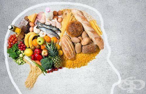 Осигурете на мозъка си 5 важни продукта за подобряване на паметта - изображение