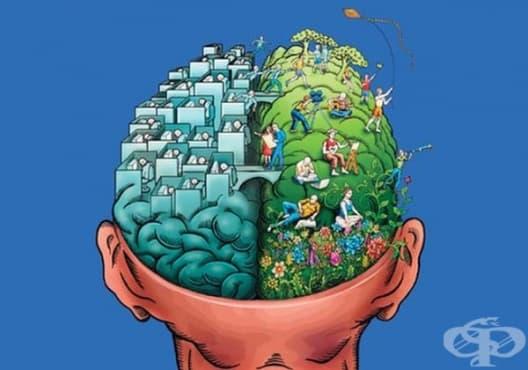 Отговорете на един въпрос и разберете какъв тип мислене имате - изображение