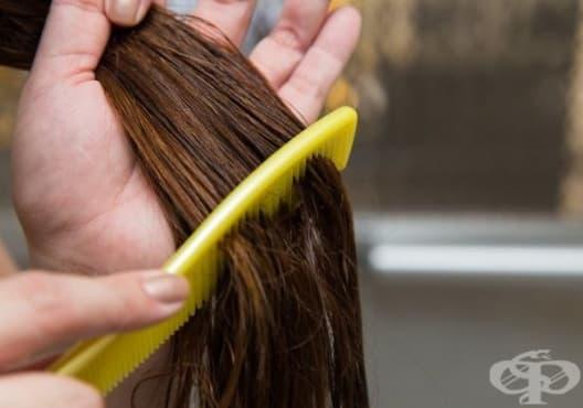 Открийте най-добрите етерични масла в грижата за косата - изображение