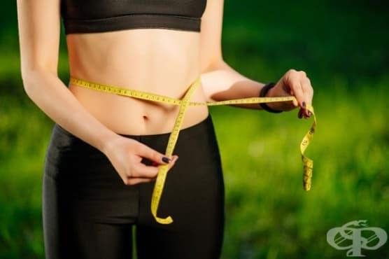 Използвайте глюкоманан за отслабване и контрол на кръвната захар и холестерола - изображение