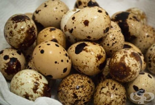 Преборете акнето с маска от пъдпъдъчи яйца, зехтин и масло от лавандула - изображение