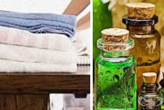 Почистете петната от мухъл по тъканите с масло от чаено дърво    - изображение