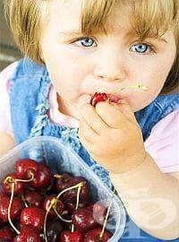 Подгответе черешите, преди да ги дадете на детето си - изображение
