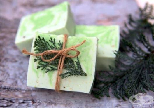 Подхранете кожата със сапун от бреза, кедър и кипарис - изображение