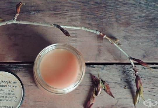 Подхранете кожата с мехлем от топола - изображение