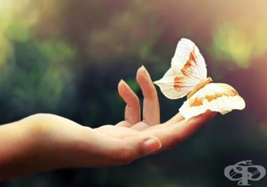 Подмладете кожата на ръцете си с 6 природни средства - изображение