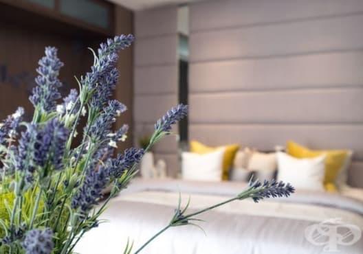 Подобрете качеството на съня с ароматизатор от лавандула - изображение