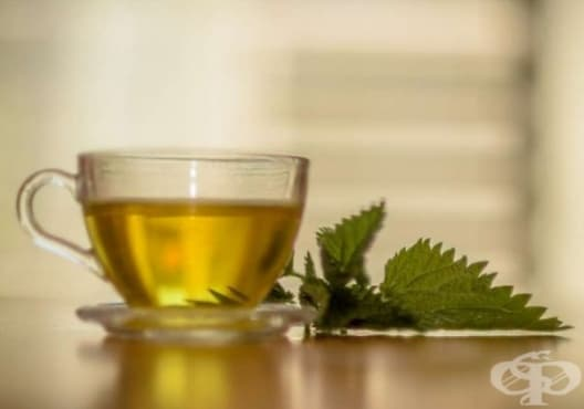 Пречистете черния дроб с чай от коприва и живовляк - изображение