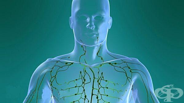 Пречистете лимфната си система чрез едно активно упражнение - изображение