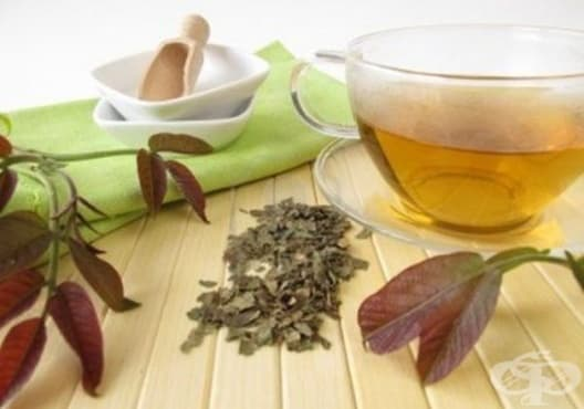 Пречистете лимфната система с чай от орехови листа - изображение