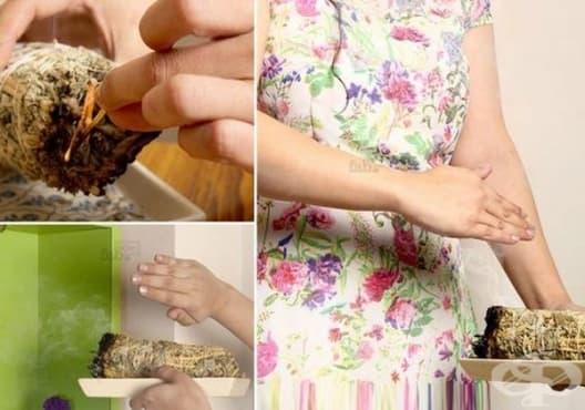 Пречистете въздуха с билкови снопчета от розмарин и градински чай - изображение