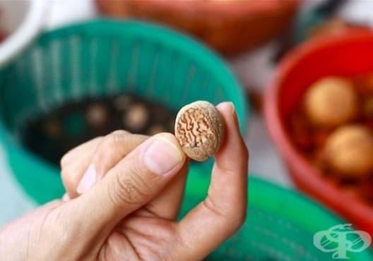Предотвратете появата на кариес с индийско орехче и карамфил - изображение