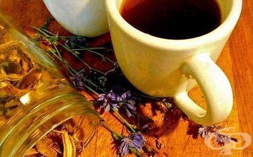 При проблеми с нервите, съня и сърцето пийте цикория вместо кафе - изображение