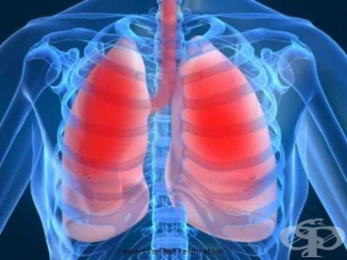 Прочистете и укрепете белите си дробове по няколко естествени начина - изображение