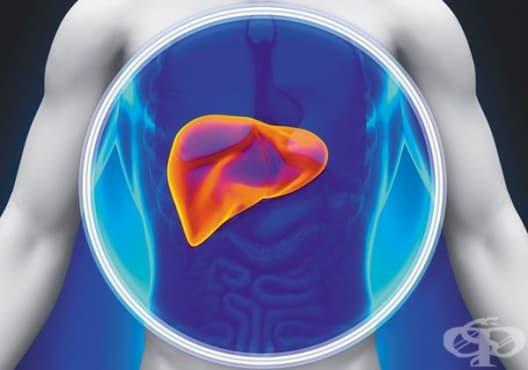 Разберете дали вашият черен дроб функционира правилно с тези 6 признака - изображение