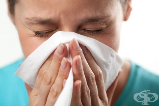 Облекчете алергичния ринит с отвара от коприва - изображение