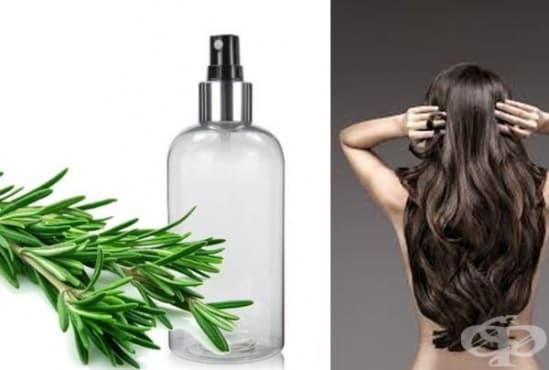 Направете си спрей от розмариново масло за лъскава и здрава коса - изображение