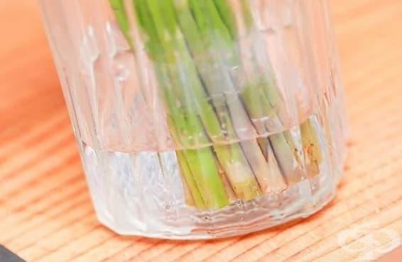 Как да съхраним аспержите свежи за по-дълго? - изображение