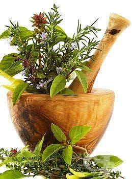 Ще премахнете възлите на щитовидната жлеза със смес от 8 билки - изображение