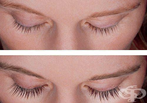 Смесете 3 натурални масла за растеж на миглите и веждите - изображение