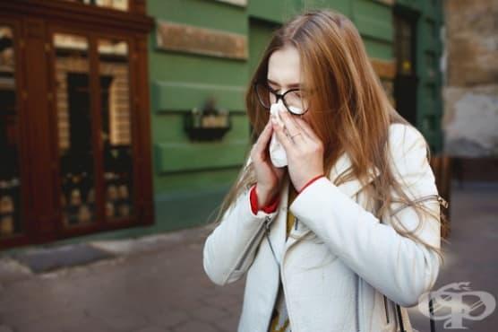 Как да се справим с честото кихане - изображение