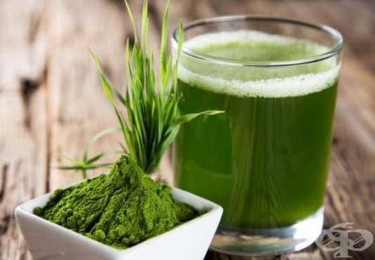 Подобрете храносмилането със сок от житна трева - изображение