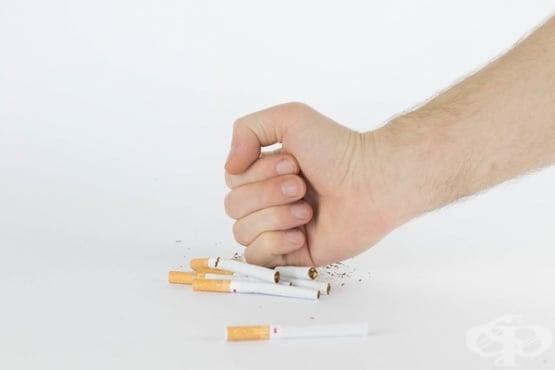 Защо да спра да пуша – вредите от цигарите и ползите от отказването им - изображение
