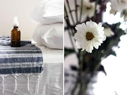 Освежете въздуха в жилището си с натурален спрей от етерични масла - изображение