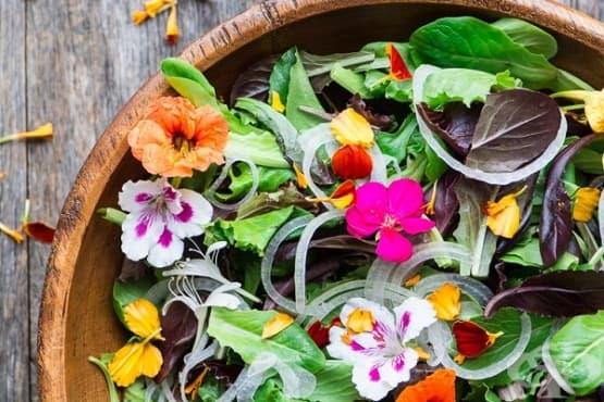 Внесете пъстрота и витамини в менюто с 5 ядливи цветя - изображение