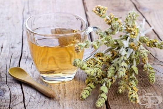 Пийте мурсалски чай при стомашни проблеми и грип - изображение
