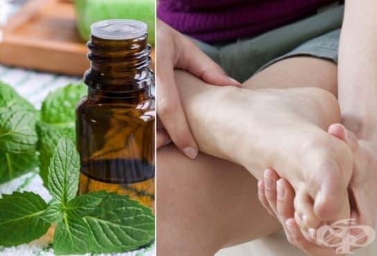 Масажирайте уморените крака с масло от розмарин, евкалиптовото и ментовото масло - изображение