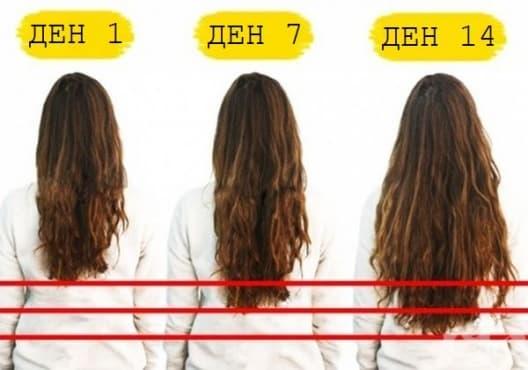 Ускорете растежа на косата със 7 вида храни - изображение