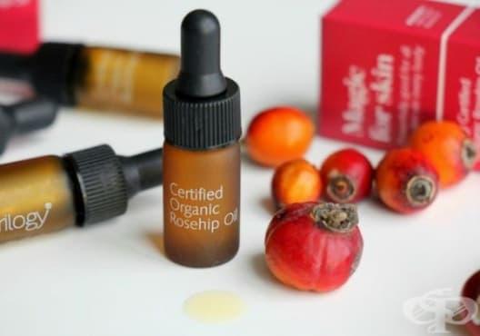 Заличете белезите по кожата с масло от шипка - изображение