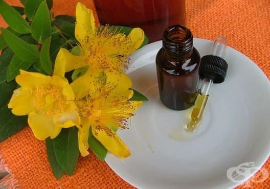 Заличете синините и отока с масло от жълт кантарион - изображение