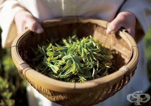 Заличете следите от акне със зелен чай - изображение