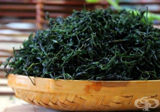 Заздравете ноктите си със зелен чай и чаено дърво - изображение