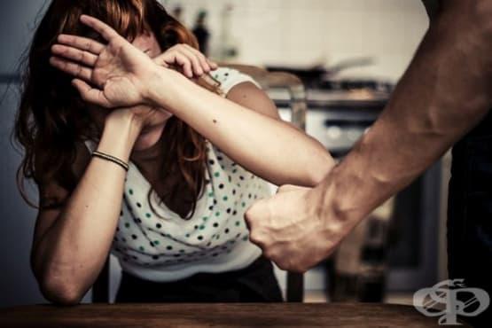 Програма, осигуряваща защита и превенция срещу насилието у дома за 2017-2018 г. - изображение