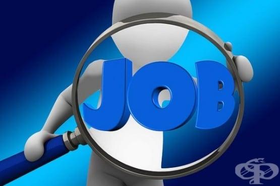 На 15 юни 2020-а НОИ изплати обезщетения за безработица в размер на 54 250 000 лв. - изображение