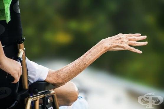 Пет хиляди души с увреждания ще вземат половината от пенсията си за юли - изображение
