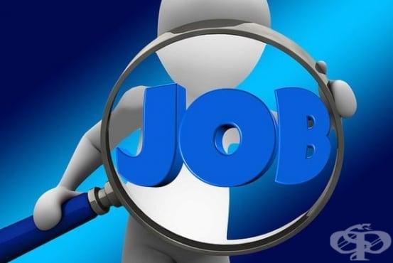Центровете за заетост и социално подпомагане са осигурили заетост на 6400 души - изображение