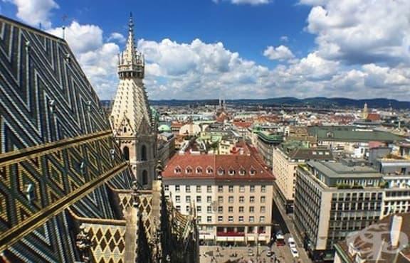 Българските студенти във Виена се запознават днес с възможностите за реализация у нас - изображение