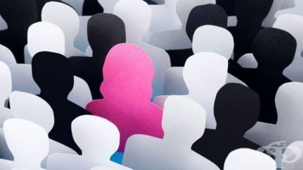 Бюрата по труда в страната организираха 22 срещи за психологическа подкрепа - изображение