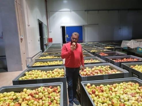 Дариха десет тона ябълки за социалните заведения в Пловдив - изображение