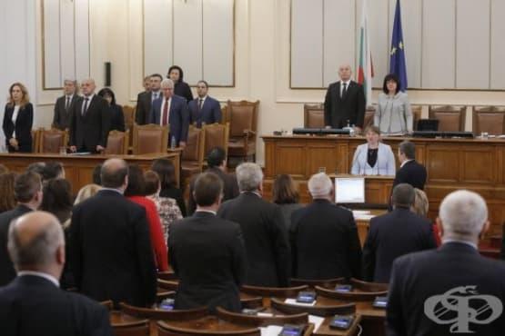 Мнозинството в НС избра Деница Сачева за социален министър - изображение