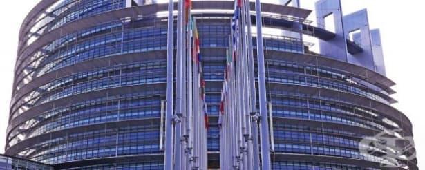 ЕП ще наблюдава прилагането у нас на Европейската стратегия за хората с увреждания - изображение