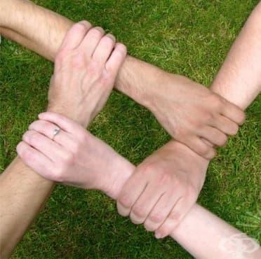 Как да бъдем отборни играчи на работното място  - изображение