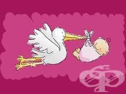 Обезщетение за майчинство от Националния осигурителен институт - изображение