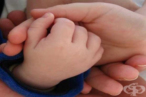 Над 2100 са приемните семейства към края на септември - изображение