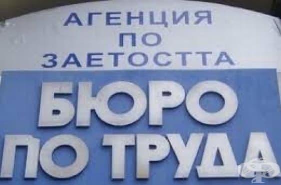 Нова мярка на Агенцията по заетостта насърчава безработните - изображение